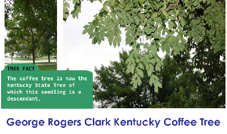George Rogers Clark Kentucky Coffee_thumb.png
