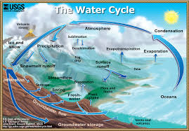 Water Cycle.jpg