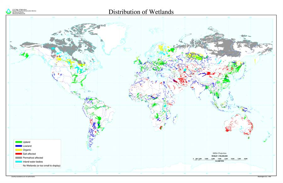 Wetland distribution.jpg